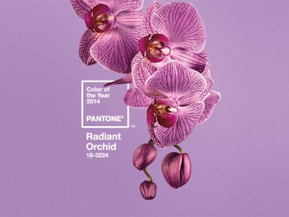 Radiant Color